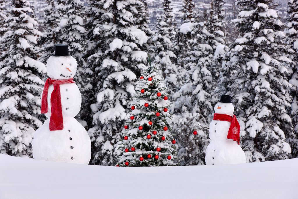 Stock Photo: 4289-13718 Photo of adult and child snowmen wearing red scarves and black top hats standing next to a Christmas tree with red ornaments in front of a snowcovered spruce forest, Anchorage, Southcentral Alaska, Winter