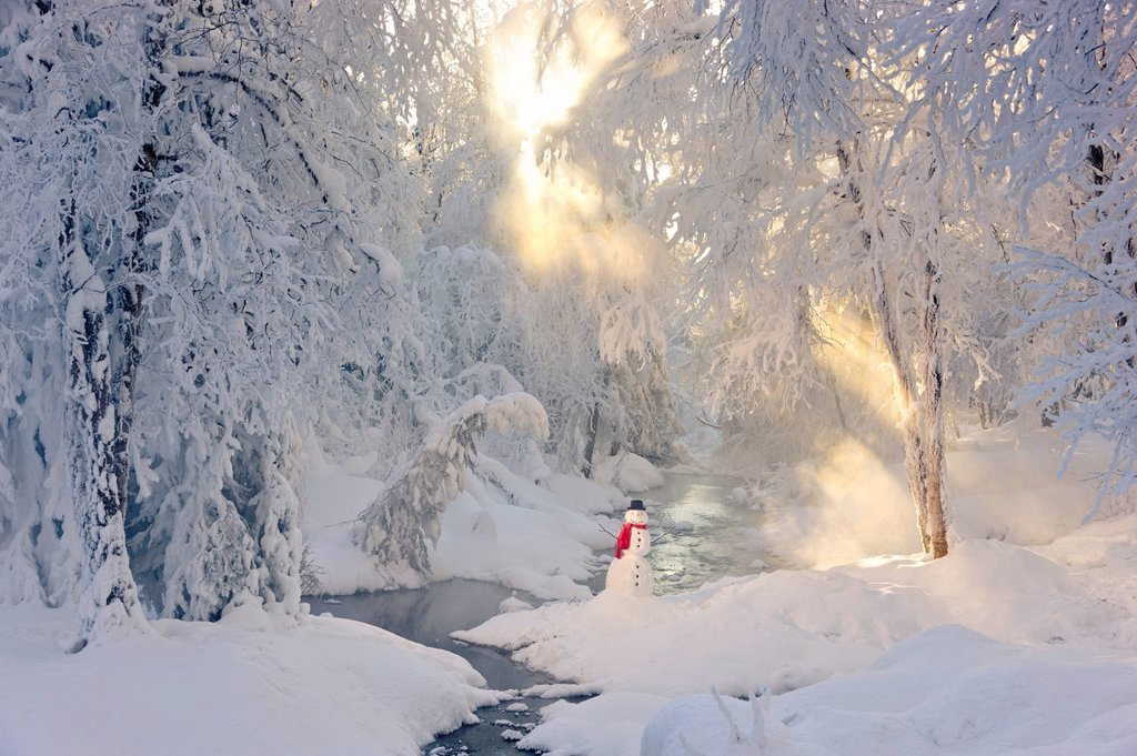 Snowman wearing a red scarf and black top hat standing in the snow next to a small stream in a foggy hoarfrost covered forest, Russian Jack Park, Anchorage, Southcentral Alaska, Winter : Stock Photo