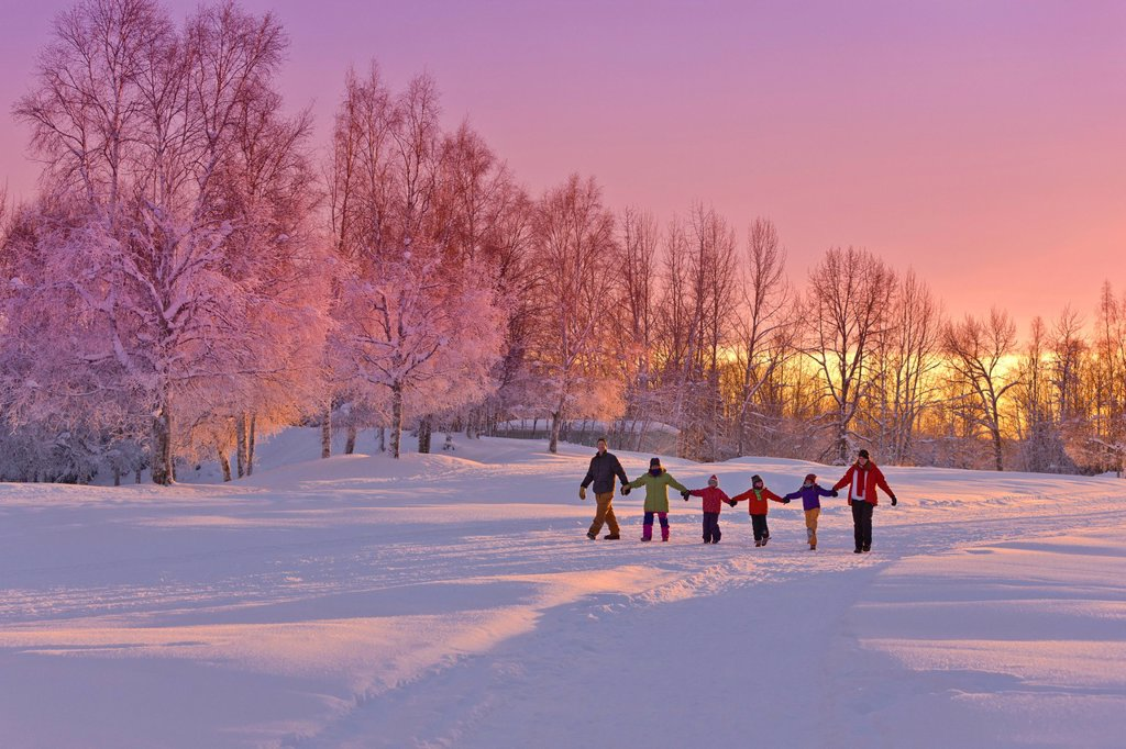 Family group, holding hands, walk on a snow path at sunset with a birch forest in the background, Russian Jack Springs Park, Anchorage, Southcentral Alaska, Winter : Stock Photo