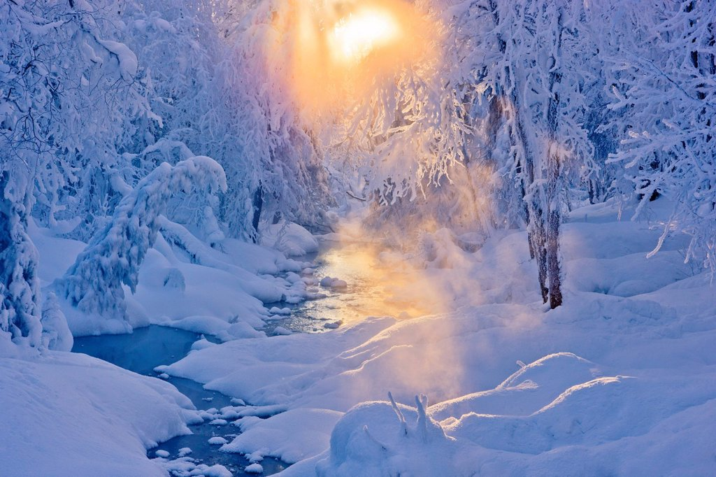 Small stream in a hoarfrost covered forest with rays of sun filtering through the fog in the background, Russian Jack Springs Park, Anchorage, Southcentral Alaska. Digitally enhanced. : Stock Photo