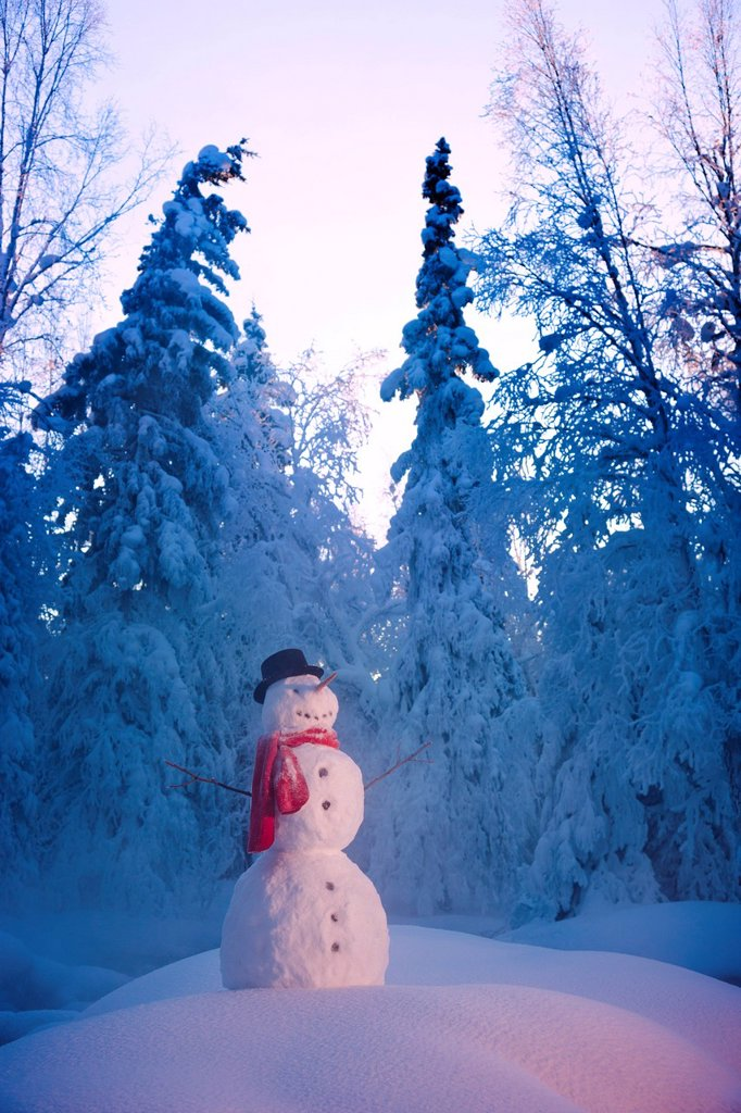 Stock Photo: 4289-13772 Snowman standing amongst hoar frosted trees, Russian Jack Springs Park, Anchorage, Southcentral Alaska, Winter. Digitally enhanced.