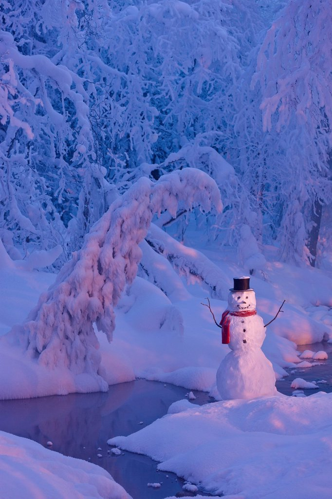 Snowman wearing a black scarf and top hat standing next to a small stream in a hoarfrost covered forest at twilight, Russian Jack Springs Park, Anchorage, Southcentral Alaska, Winter. Digitally Enhanced. : Stock Photo
