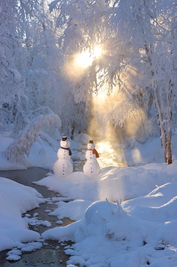 Stock Photo: 4289-13781 Snowman couple standing next to a stream with sunrays shining through fog and hoar frosted trees in the background, Russian Jack Springs Park, Anchorage, Southcentral Alaska, Winter. Digitally enhanced.