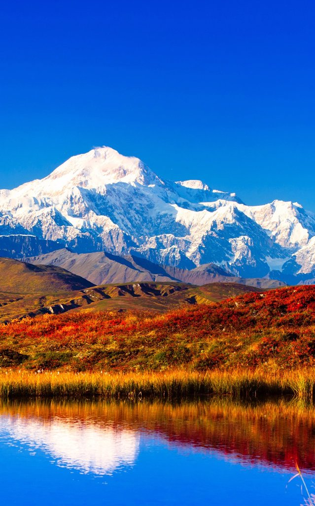 View of Peters Hills reflected in a pond with Mt. McKinley in the background, Denali State Park, Southcentral Alaska, Fall : Stock Photo