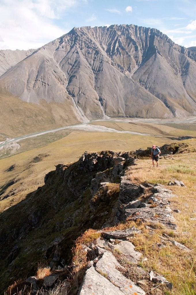 Stock Photo: 4289-13879 Mature male hiker climbs slope above the Marsh Fork of the Canning River in the Brooks Range, Arctic National Wildlife Refuge, Alaska, Summer