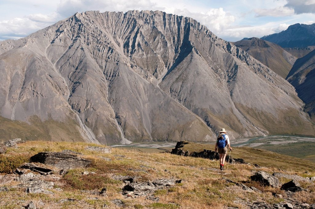 Stock Photo: 4289-13881 Mature female hiker descends slope above the Marsh Fork of the Canning River in the Brooks Range, Arctic National Wildlife Refuge, Alaska, Summer