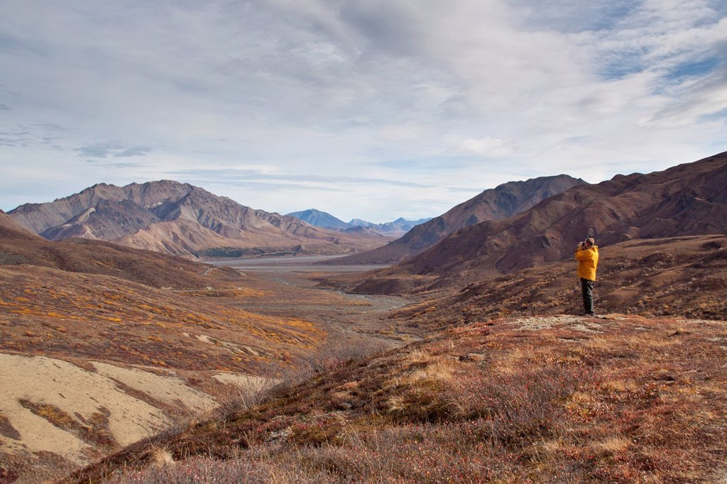 Stock Photo: 4289-14035 Man photographing scenic view near Polychrome Pass, Denali National Park & Preserve, Interior Alaska, Autumn