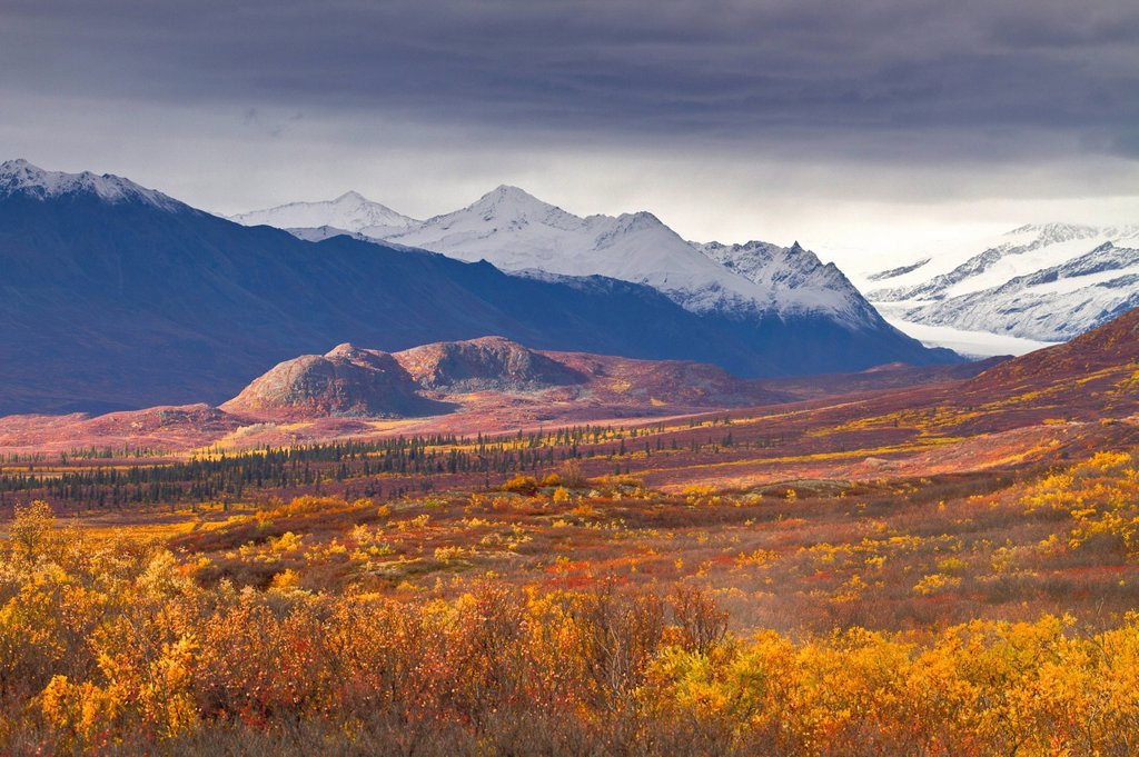 Stock Photo: 4289-14057 Autumn scenic of the Maclaren River valley and Alaska Range, Southcentral Alaska