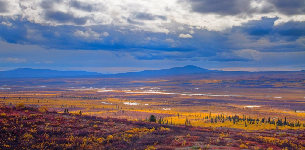 Overview of the Maclaren River Valley with storm clouds and fall colors, Southcentral Alaska, HDR : Stock Photo