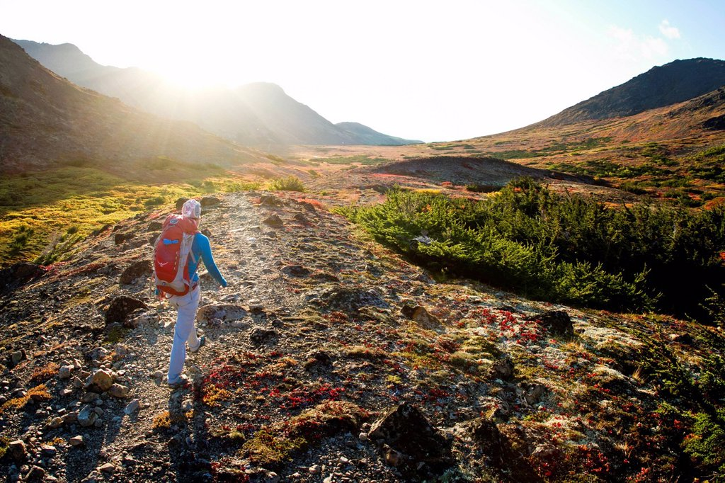 Stock Photo: 4289-14097 Woman hiking on trail in Glen Alps area of Chugach Mountains, Southcentral Alaska, Autumn