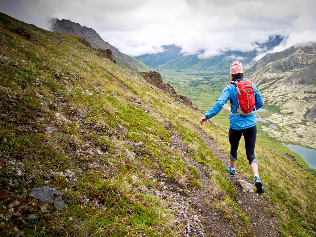 Woman mountain trail running on The Wedge, above Ship Lake, Chugach Mountains, Glen Alps, Southcentral Alaska, Summer : Stock Photo