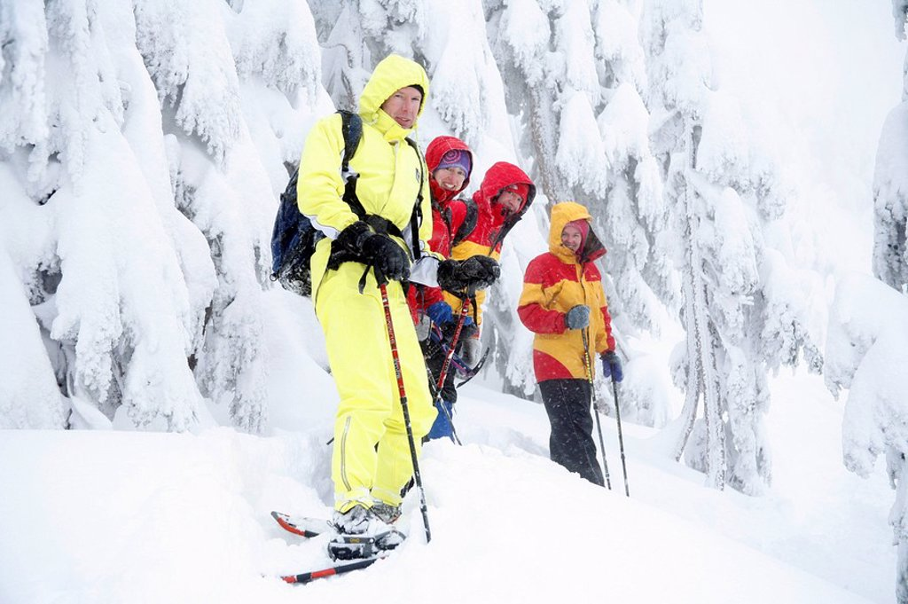 Group of snowshoers on Deer Mountain during heavy snowfall near Ketchikan in Southeast Alaska : Stock Photo
