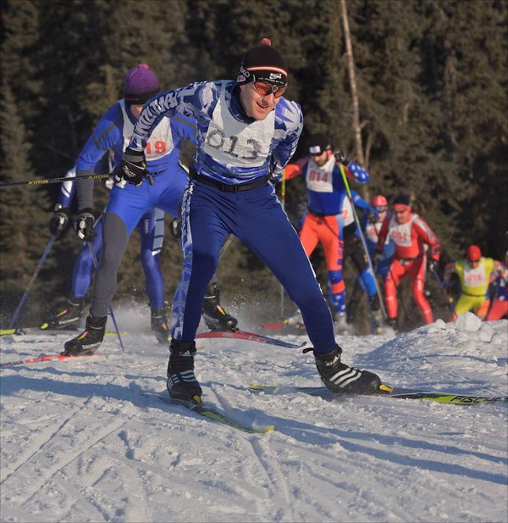 Skiers on the trail during the Tour of Anchorage race, Alaska : Stock Photo