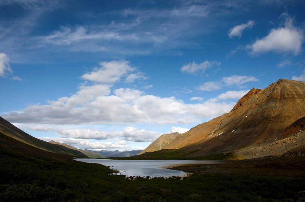 View of Grizzly Lake, Tombstone Territorial Park, Yukon Territory, Canada, Summer : Stock Photo