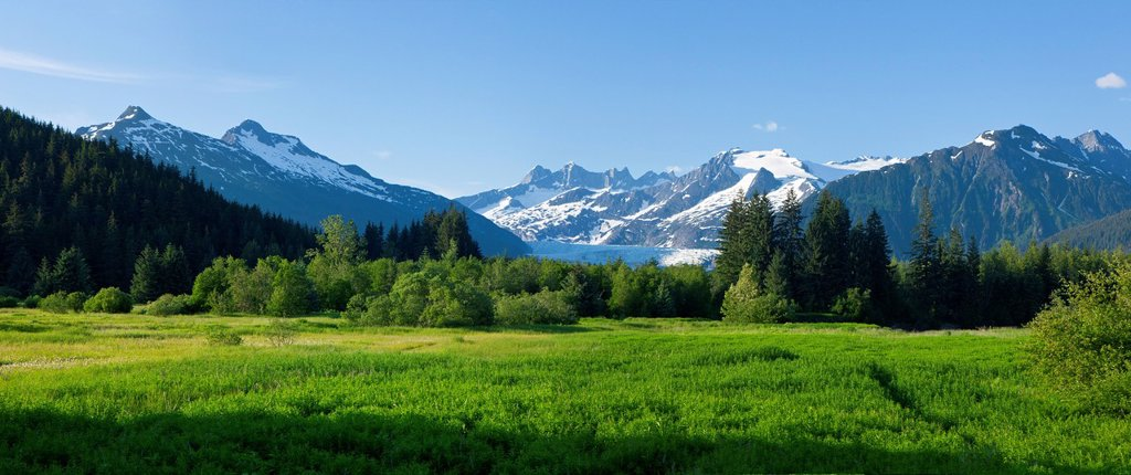 Scenic view of Brotherhood Meadow in the Mendenhall Valley, Mendenhall Glacier and Towers beyond in the distance,Juneau, Southeast Alaska, Summer : Stock Photo