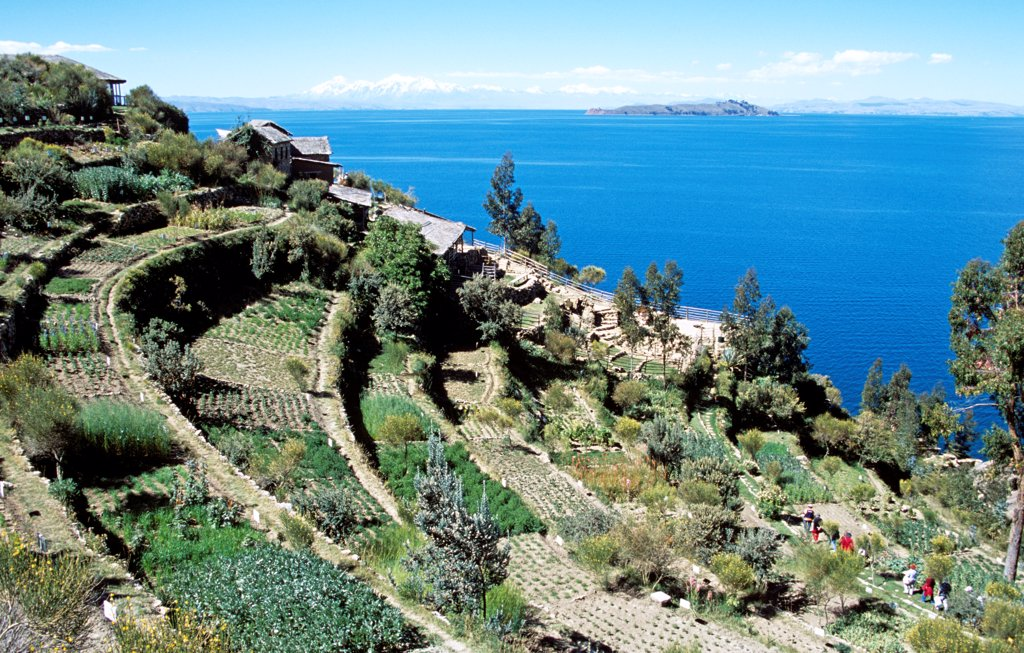 Stock Photo: 4290-10122 Terraces, Moon Island in distance, from Inti Wata Cultural Complex on Sun Island, Lake Titicaca, near Copacabana, Bolivia