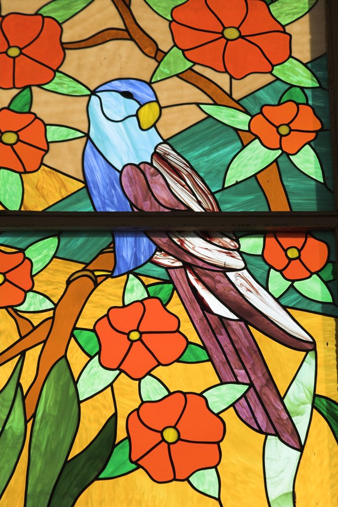 Stock Photo: 4290-1422 Colourful stained glass window of parrot perched in a tree, Trinidad, Cuba