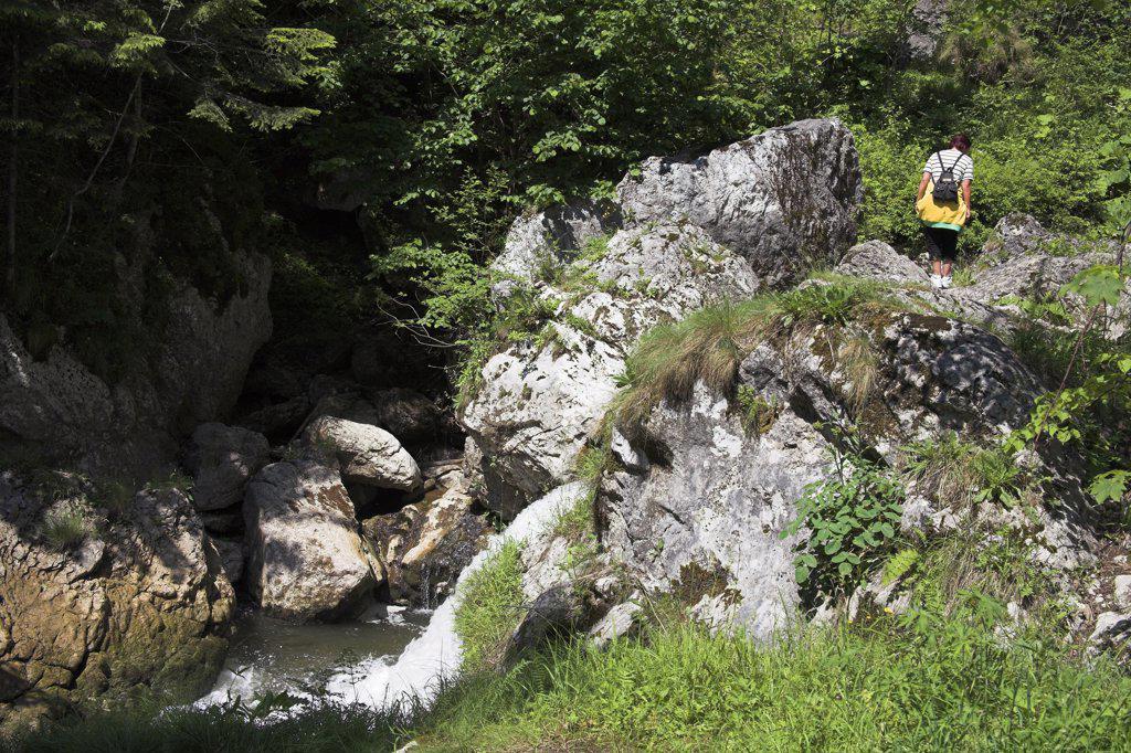 Tourist walking in Bicaz Gorge, Cheile Bicazului Hasmas, Southern Moldavia, Romania : Stock Photo