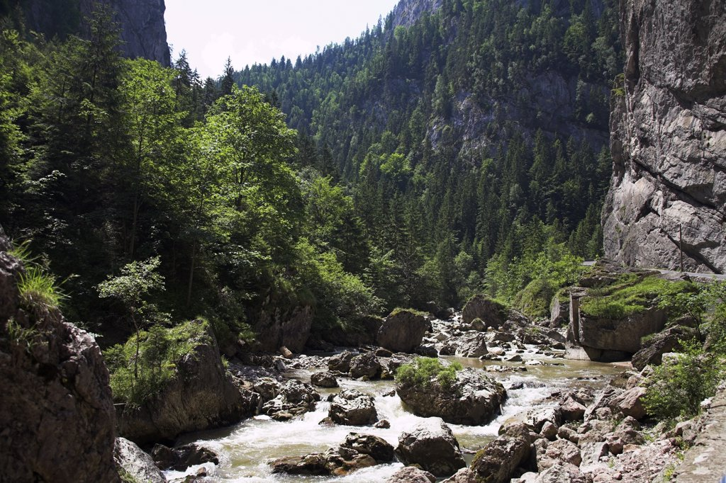 Stock Photo: 4290-3250 River in Bicaz Gorge, Cheile Bicazului Hasmas, Southern Moldavia, Romania