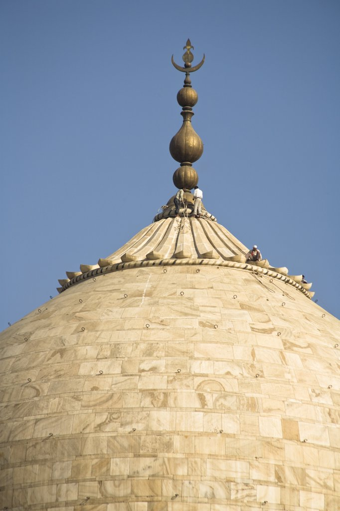 Stock Photo: 4290-3454 Close up view of men maintaining the dome of the Taj Mahal, Agra, Uttar Pradesh, India