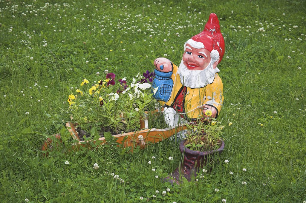 Stock Photo: 4290-3575 Gnome in garden, near Bran, Transylvania, Romania