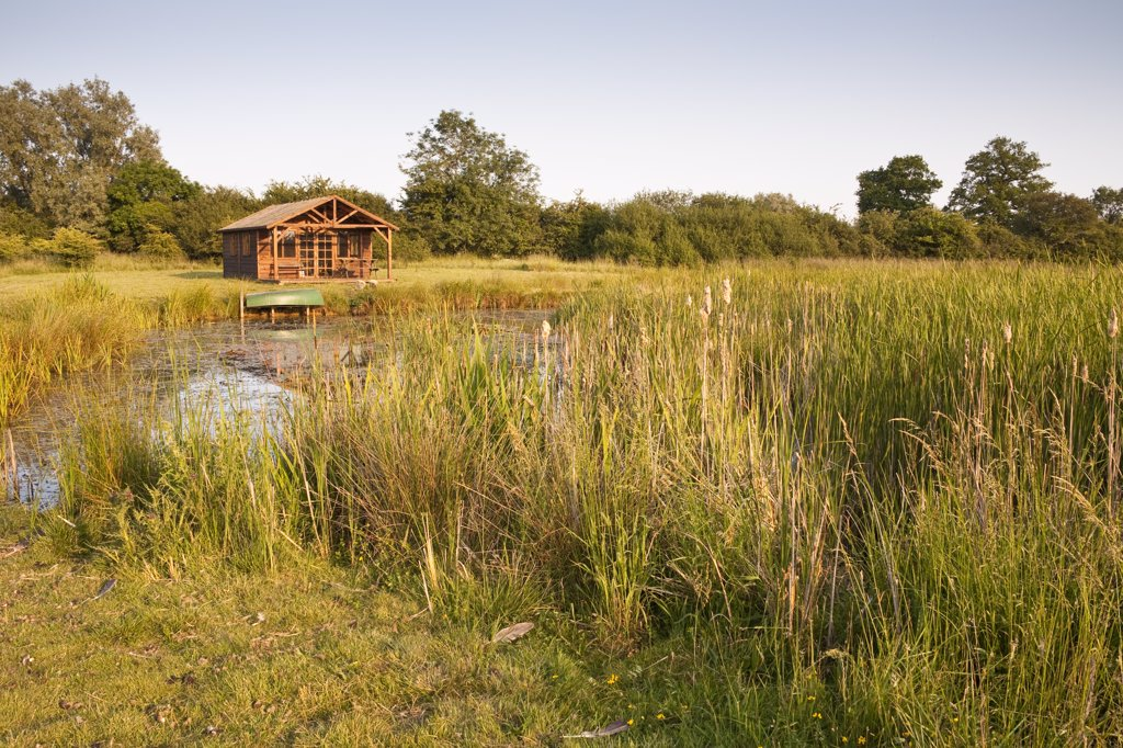 Large pond and summerhouse in the countryside, Wiltshire, England : Stock Photo