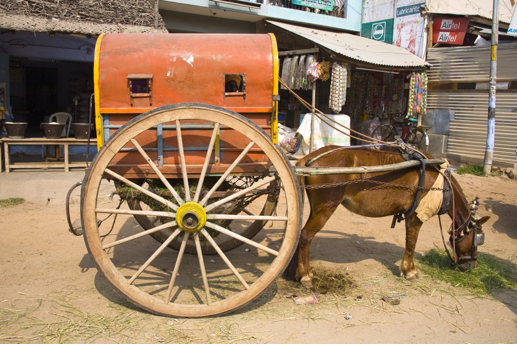 Donkey and old cart parked outside a shop, in the street, Tamil Nadu, India : Stock Photo