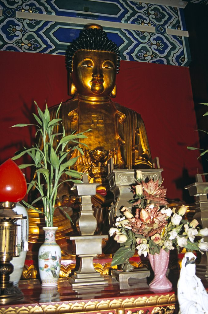 Stock Photo: 4290-7903 Buddha, Po Fook Ancestral Worship Halls, Sha Tin, New Territories, Hong Kong, China