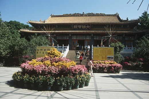 A temple, Po Lin Monastery, Lantau Island, Hong Kong, China : Stock Photo