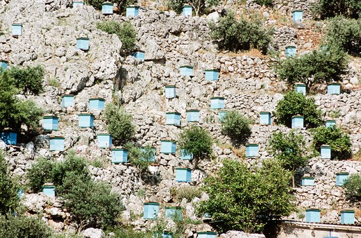 Blue beehives on side of cliff, Kefalonia, Greece : Stock Photo