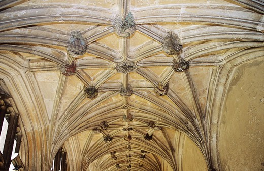 Ceiling in the cloisters, Lacock Abbey, Lacock, Wiltshire, England. : Stock Photo