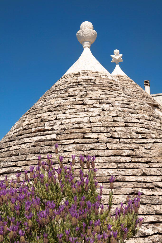 Conical dry stone roof of a trulli house, Rione Monti, Alberobello, province of Bari, in the Puglia region, Italy : Stock Photo