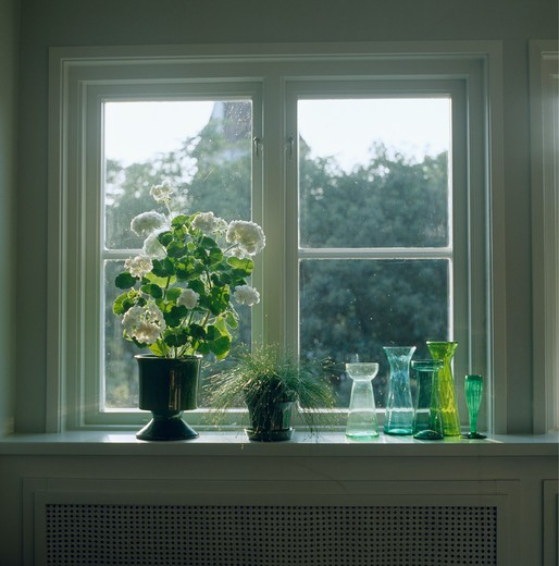 White geranium and colourful bulb vases on window sill : Stock Photo