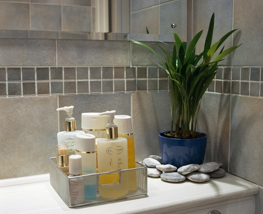 Close-up of toiletries in glass container beside houseplant : Stock Photo