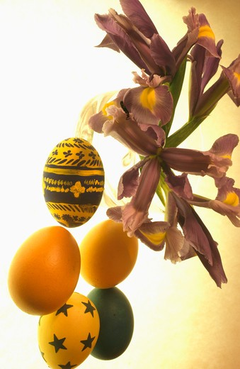 Close up of iris with blown eggs decorated and painted for Easter : Stock Photo