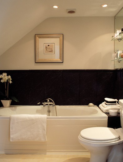 Stock Photo: 4291-20689 Picture above bath in modern black and white attic bathroom