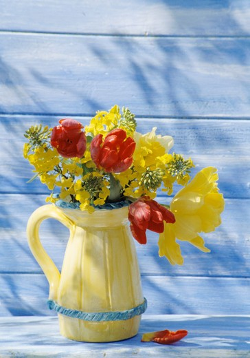 Still-Life of red and yellow tulips in yellow jug : Stock Photo