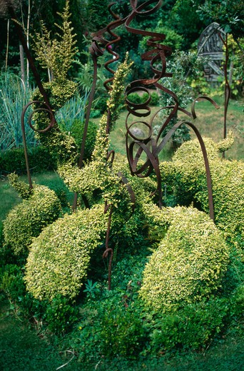 Shrubs clipped into curved shapes with informal metal sculpture : Stock Photo