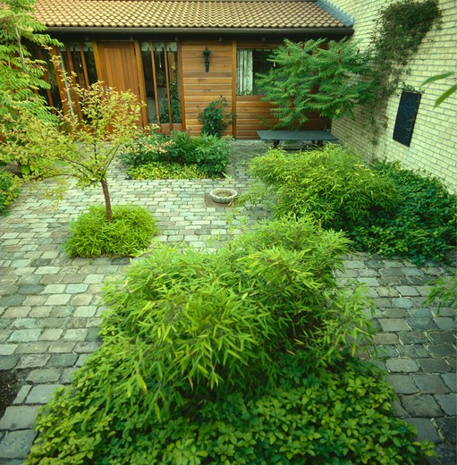 Stock Photo: 4291-9724 Courtyard with granite sets with small beds of evergreen bamboos and groundcover