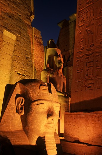 Stock Photo: 4292-105258 Egypt, Luxor, Temple of Luxor at night