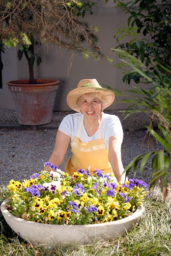 Stock Photo: 4292-109495 Senior woman gardening