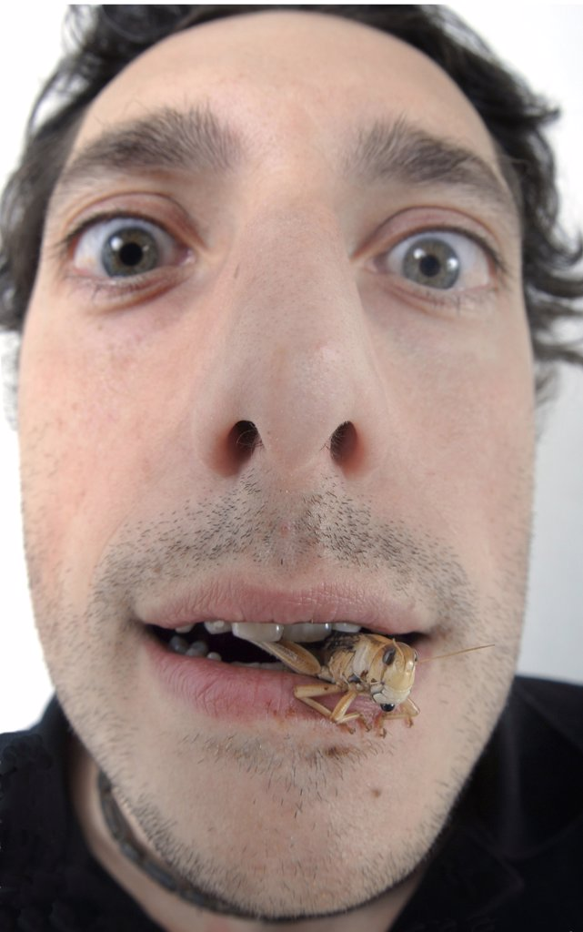 Man eating grasshopper : Stock Photo