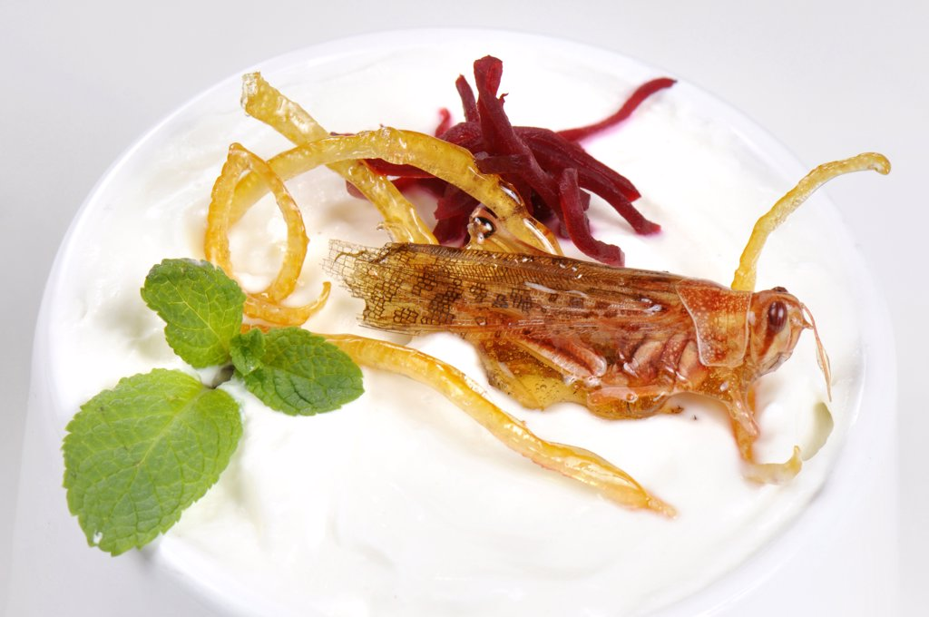 Caramelized grasshoppers on yogurt, with mint and beets : Stock Photo