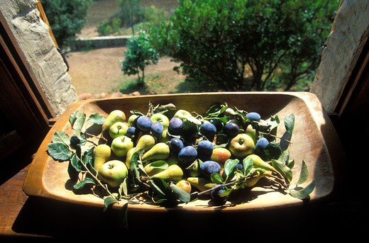 Italy, Tuscany, assorted fruits : Stock Photo