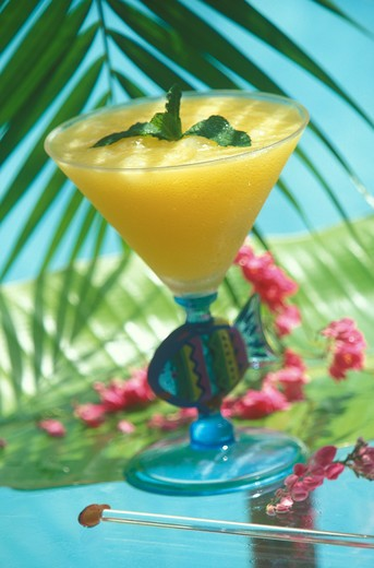 Stock Photo: 4292-112392 Tropical cocktail
