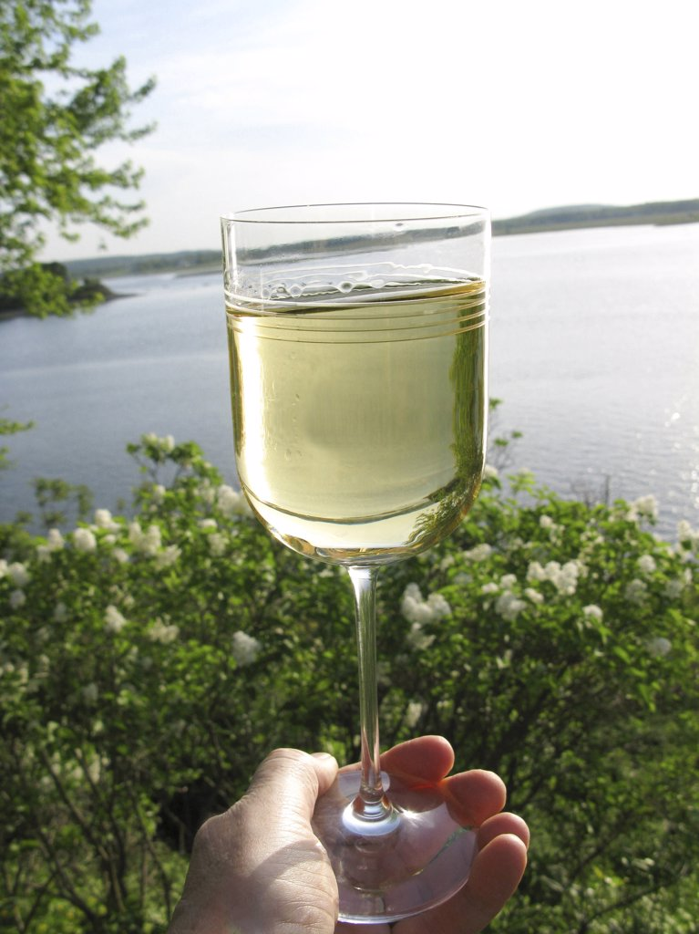 Stock Photo: 4292-112616 Hand holding a glass of white wine