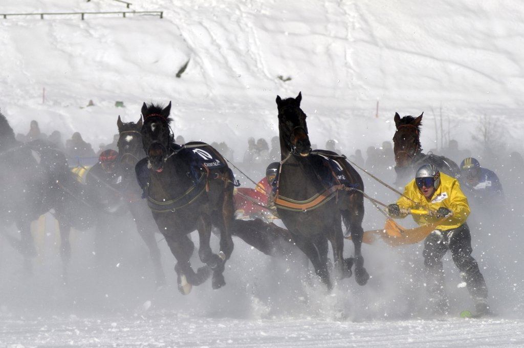 Switzerland, Saint Moritz, Ski joring : Stock Photo