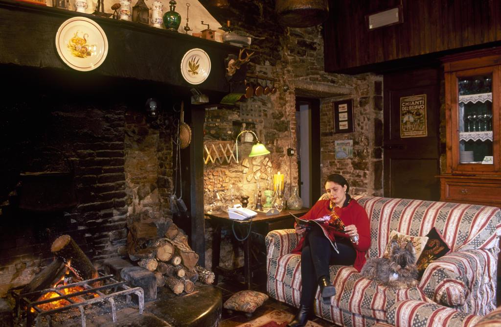 Italy, Tuscany, Radda in Chianti, living room of Podere Terreno lodge : Stock Photo