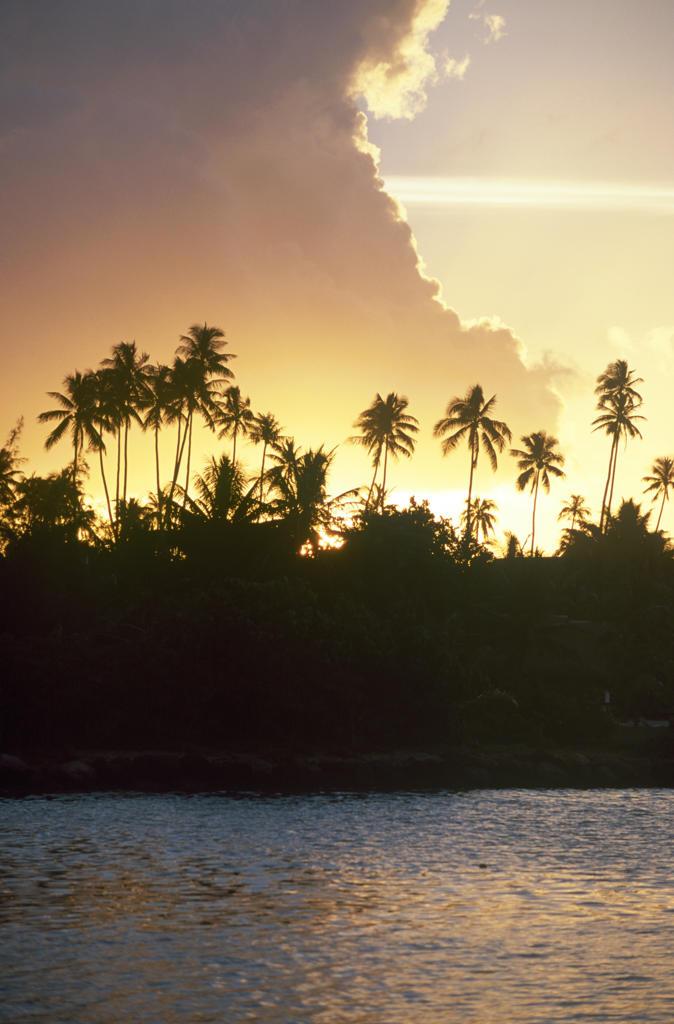 French Polynesia, Moorea, sunset on the lagoon : Stock Photo