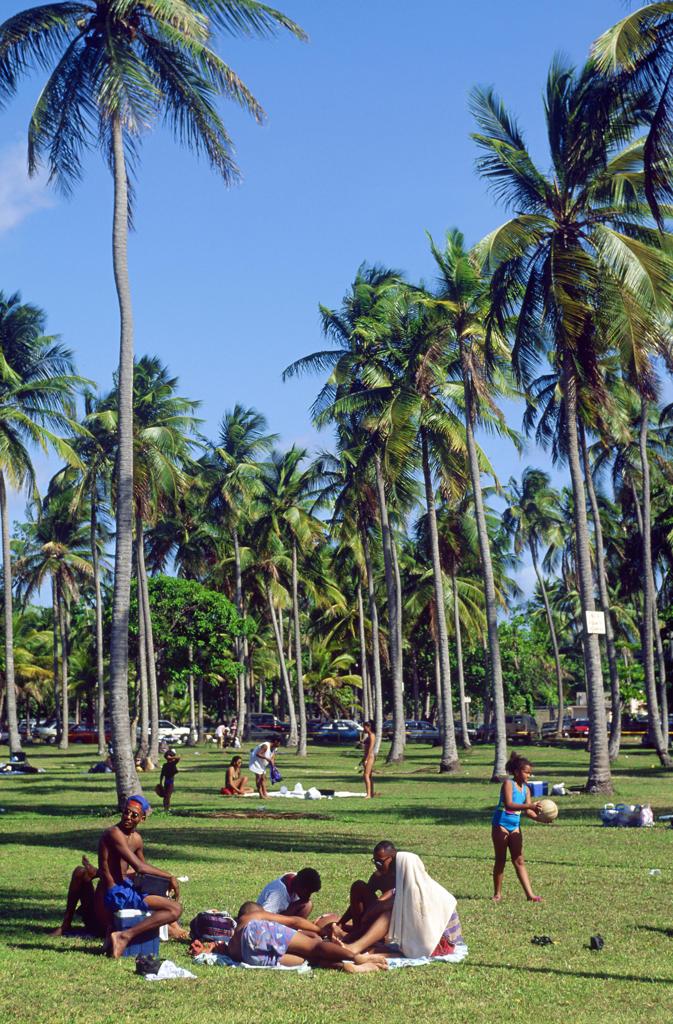 Central America, Caribbean, Puerto Rico, city park : Stock Photo